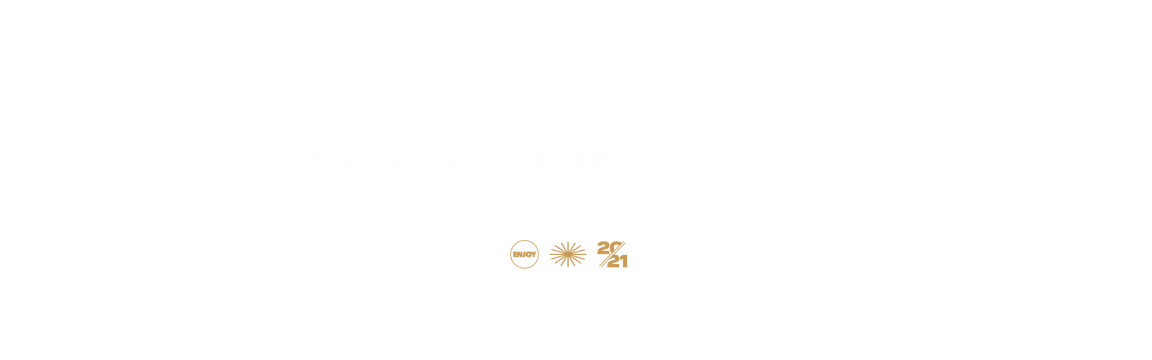 Vision Acknowledgement